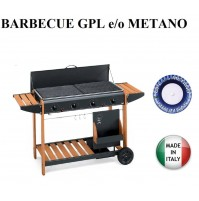 BARBECUE PIASTRA GAS FESTIVAL 2005 12,8 KW - MULTIGAS GPL O METANO MADE IN ITALY